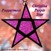 "Poppermost ""Christine Purple Star"" song cover art."